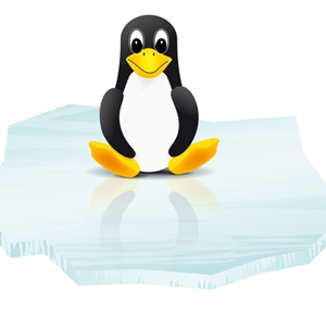 Linux is asserting itself as a possibility for companies disappointed by Windows.