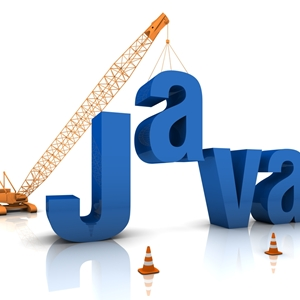 The arrival of Java might suggest some new concerns your company might need to maintain.